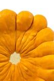 Orange pattypan squash Royalty Free Stock Images