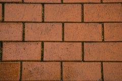 Orange paving. Outdoor wet cobblestone floor, background Stock Images