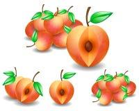 Orange peaches Royalty Free Stock Image