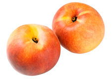 Orange peaches Stock Images