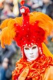 Orange Peacock Lady (1) Royalty Free Stock Photography