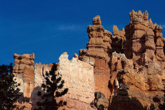 Orange peaks in Bryce canyon, USA Royalty Free Stock Image
