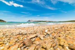 Orange pebble in Capo Coda Cavallo shore Royalty Free Stock Image
