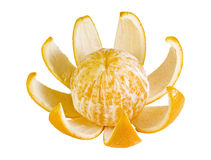 Orange with peel. Orange with a peel isolated on white royalty free stock photography