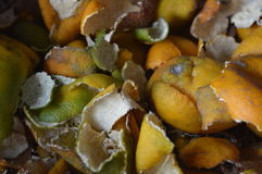 Orange peel Royalty Free Stock Images