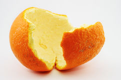 Orange peel on a neutral background Royalty Free Stock Photo