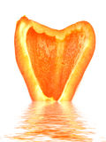 Orange Peper. An orange peper above a watery reflection Stock Photography