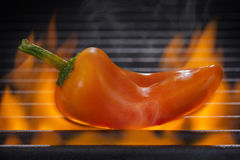 Orange peppar på ett varmt flammande grillfestgaller Arkivbilder