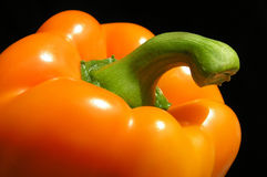 Orange pepper. With black background stock photography