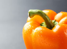 Orange pepper with water drops on the grey background Stock Image