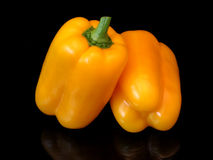 Orange peppers. With a black background royalty free stock photos