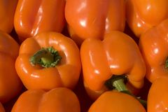Orange peppers Royalty Free Stock Images