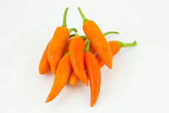 Orange peppers capsicum Royalty Free Stock Photography