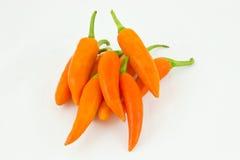 Orange peppers spanischen Pfeffer Lizenzfreie Stockfotografie