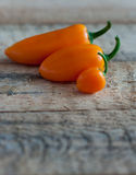 Orange peppers Stock Photography