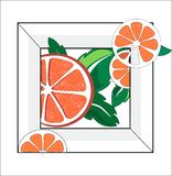 Orange with petals stock illustration