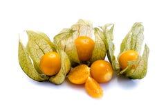Orange Physalis fruit isolated at white Background royalty free stock images