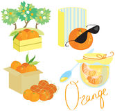 Orange picture set Royalty Free Stock Photo