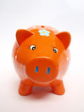 Orange pig Royalty Free Stock Image