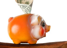Orange piggy bank with us money. Orange piggy bank   on white with us money dollars on wooden floor Royalty Free Stock Photo