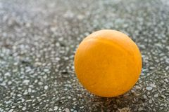 Orange ping pong on the floor Stock Image