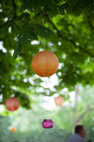 Orange and pink lanterns and lights hanging from a green tree. Orange paper lanterns and pink glass lights hanging from a green tree in the summer with a blurred Stock Photo