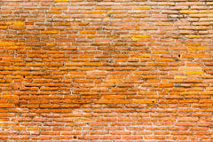 Orange pink old thin bricks work wall. Backgrounds full frame Stock Photos