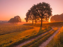 Orange and Pink Sunrise over Rural Landscape near Nijmegen Royalty Free Stock Photography