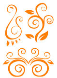 Orange plant  pattern Royalty Free Stock Photos