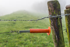 Orange plastic insulator of an electric fence Royalty Free Stock Photos
