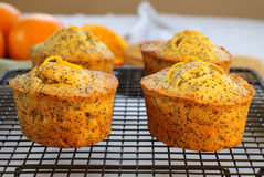 Orange And Poppyseed Cakes Royalty Free Stock Photo
