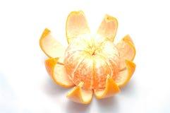 Orange posed on a orange peel against. White background Stock Image