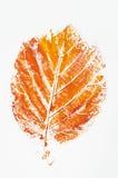 Orange printed fall leaf