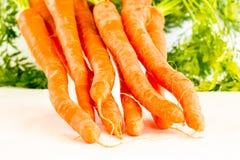 orange produce för åkerbruka bakgrundsmorötter Royaltyfria Foton