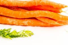 orange produce för åkerbruka bakgrundsmorötter Royaltyfria Bilder