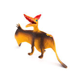 Orange pterosaurs toy on white background Royalty Free Stock Photos