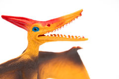 Orange pterosaurs toy on a white background Stock Images