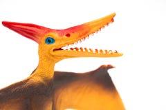 Orange pterosaurs toy on a white background. Close up Stock Images