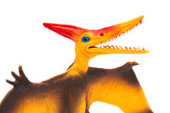 Orange pterosaurs toy on a white background. Close up Stock Photos