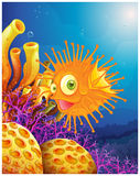 An orange puffer fish near the coral reefs. Illustration of an orange puffer fish near the coral reefs on a white background Stock Photo