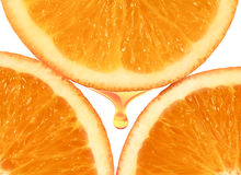 Orange pulp Stock Image