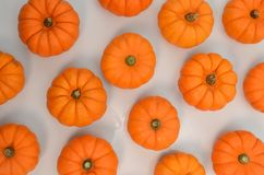 Orange pumkin on white background. For design and background stock image