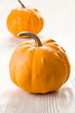 Orange pumkins Stock Images