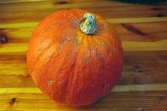 orange pumpa royaltyfri bild