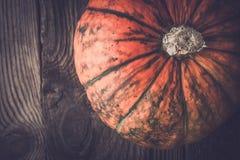Orange pumpa med gräsplan gör randig bästa sikt Arkivfoton