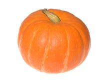 Orange pumpkin. Fresh orange pumpkin isolated on white royalty free stock photos