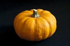 Orange pumpkin. On black background Royalty Free Stock Photography