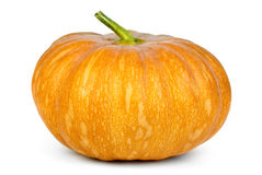 Orange pumpkin. Isolated on the white background Royalty Free Stock Images