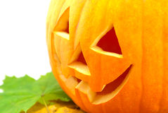 Orange Pumpkin Royalty Free Stock Photos