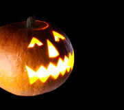 Orange Pumpkin Stock Images